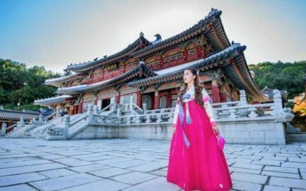 Du học Hàn Quốc giá rẻ- lựa chọn đang hot của sinh viên Việt Nam