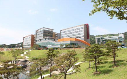 Điểm danh top 7 trường đại học tốt nhất Daegu Hàn Quốc